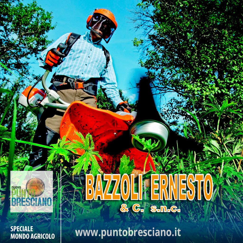 06-BAZZOLI-ERNESTO